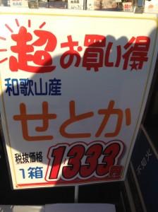 IMG_7070