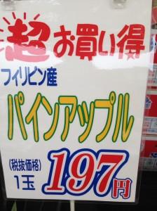 IMG_9270