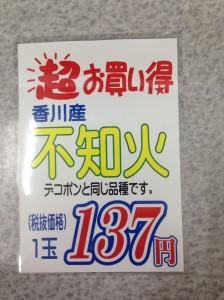 IMG_9577
