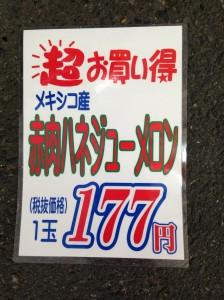 IMG_1748